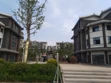 东平佛山盛景实景图14