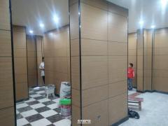 東平縣城信德·陽光城精裝出租 帶獨立車庫