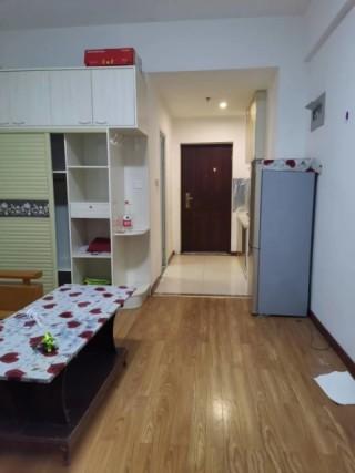 东平县名门公馆(图书大厦)1室1厅1卫40m²中档装修