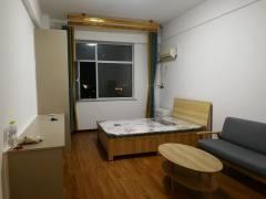 东平县名门公馆(图书大厦)1室1厅1卫40m²