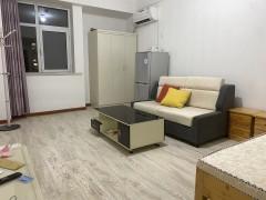 东平县东城区名门公馆图书大厦1室1厅1卫800元/月40m²精装修出租